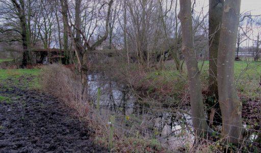 Kruisschot in Stiphout, de lotgevallen van een moated site