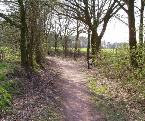 Wegen gaan en komen, een historische blik op wegen en paden