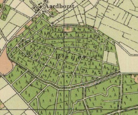 Weijers in oostelijk Brabant